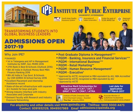 Institute of Public Enterprise